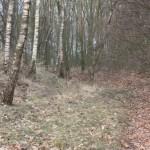 bunker-hill-028-2