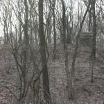bunker-hill-037-2