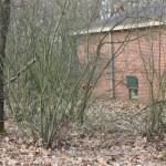 bunker-hill-0381
