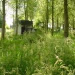 airsoft-locatie-rsl-outdoor-assendelft-6